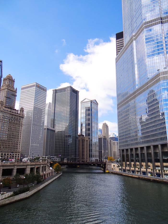 Chicago Downtown (4)
