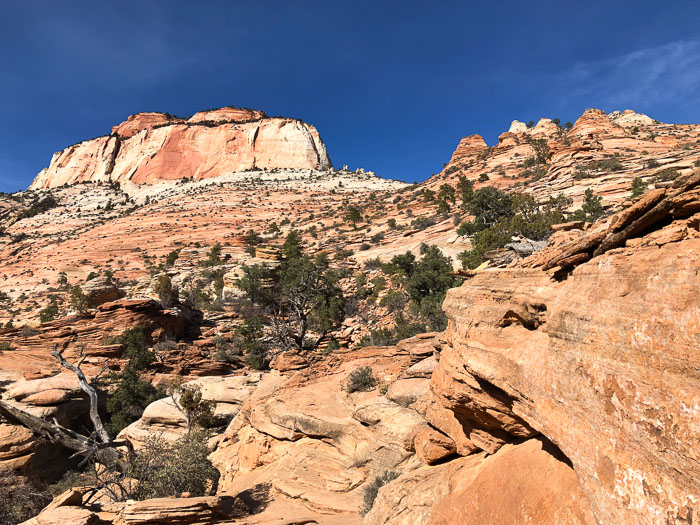 Zion National Park - Trilha Canyon Overlook (6)